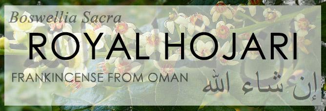 Royal Hojari - Baswellia Sacra - Frankincense from Dhofar Oman